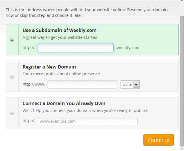 step5-select-domain